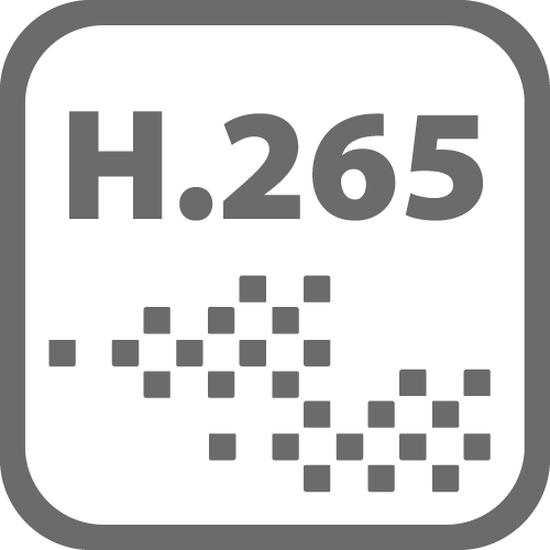 H.265.png